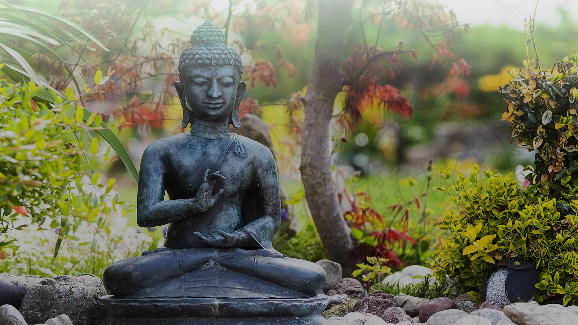 Lord Budha Meditating